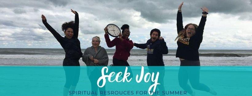 seek joy
