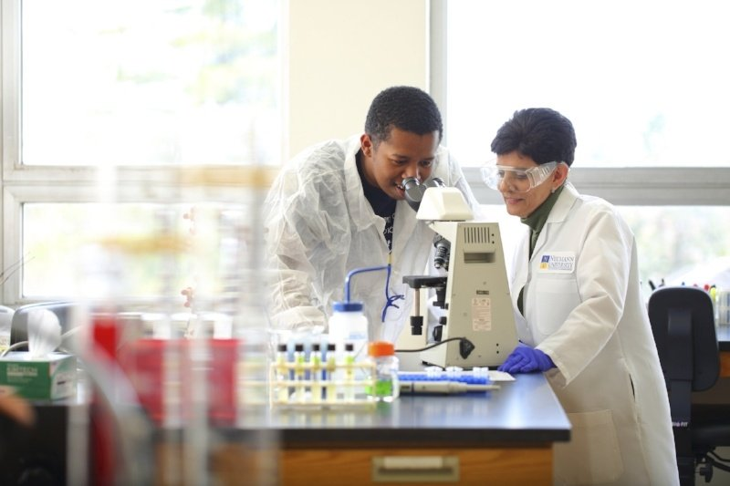 9 (More) College Degrees for Tomorrow's STEM Leaders